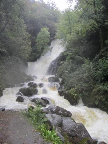 Torc Falls, Killarney National Park