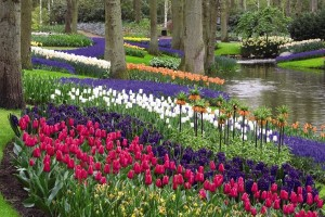 Springtime in Europe