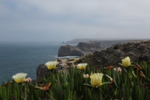 Cape St Vincent Cliffs