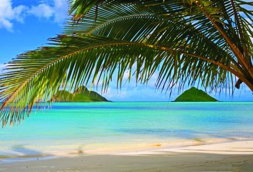 Beach in Oahu