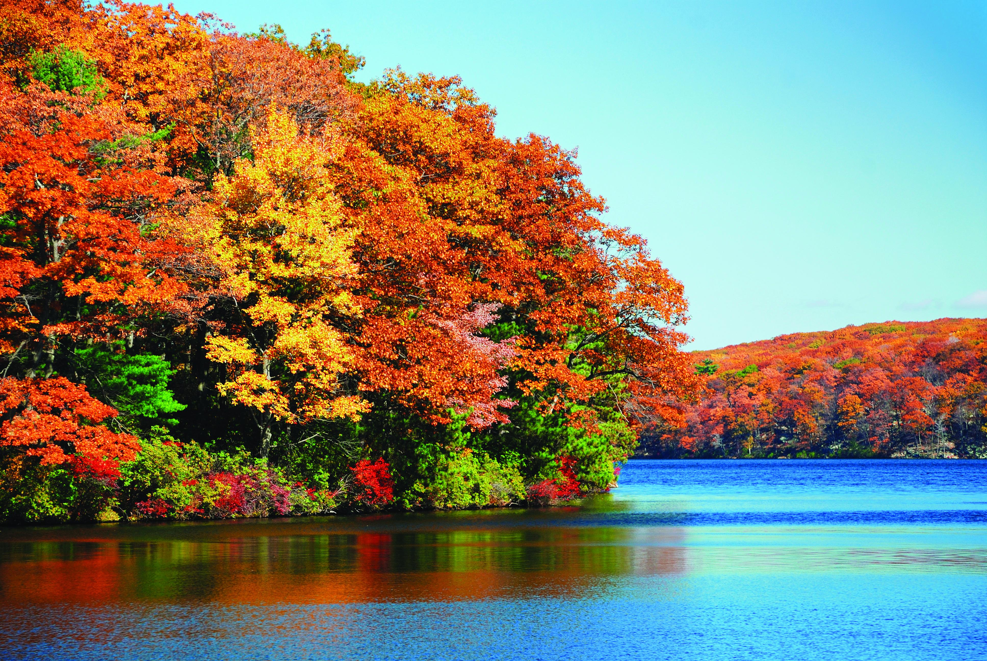 New england fall foliage travel blog by trafalgar for 9 kitchener street trafalgar